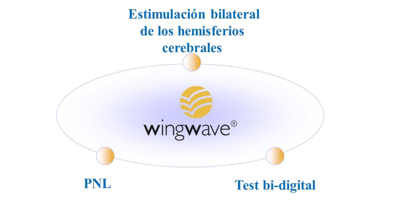 Qué es el coaching wingwave