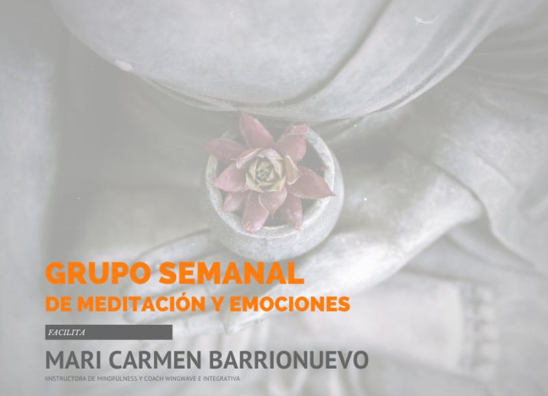 grupo-meditacion-emociones-benalmadena
